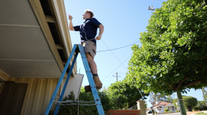 Looking for a Professional Electrician in Subiaco